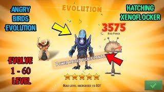 Angry Birds Evolution - Xenoflocker Hatching and 0 to 60 Evolve
