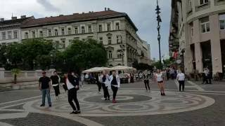 Michael Jackson Flash Mob Budapest 2016.06.05. Lavelle Smith Jr. és Prince Majesty Jackson