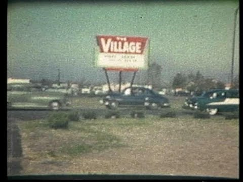 The Village Shopping Center - Gary, Indiana