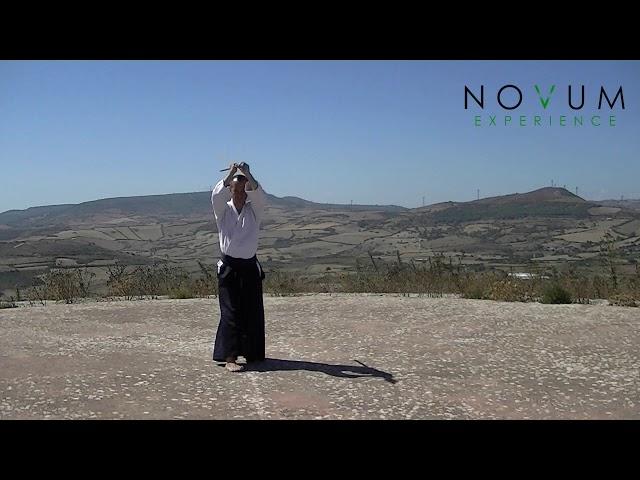Roku no Jo Kata - Aikido Novum Experience - 合氣道 - 合氣杖 - 六の杖形