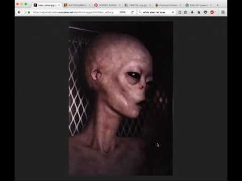 Get Ready for the Ships. Survivor Exposes Reptilians, Greys, Torture, Tunnels, More!