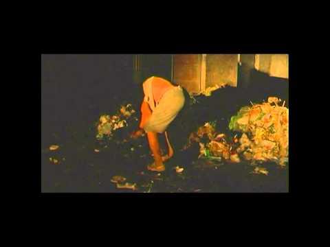 Beijing Besieged by Waste (Wei Cheng La Ji)