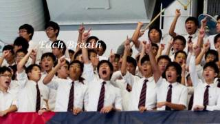DBS Swimming 2011 - Each Breath. Each Stroke. One Soul. One Goal.