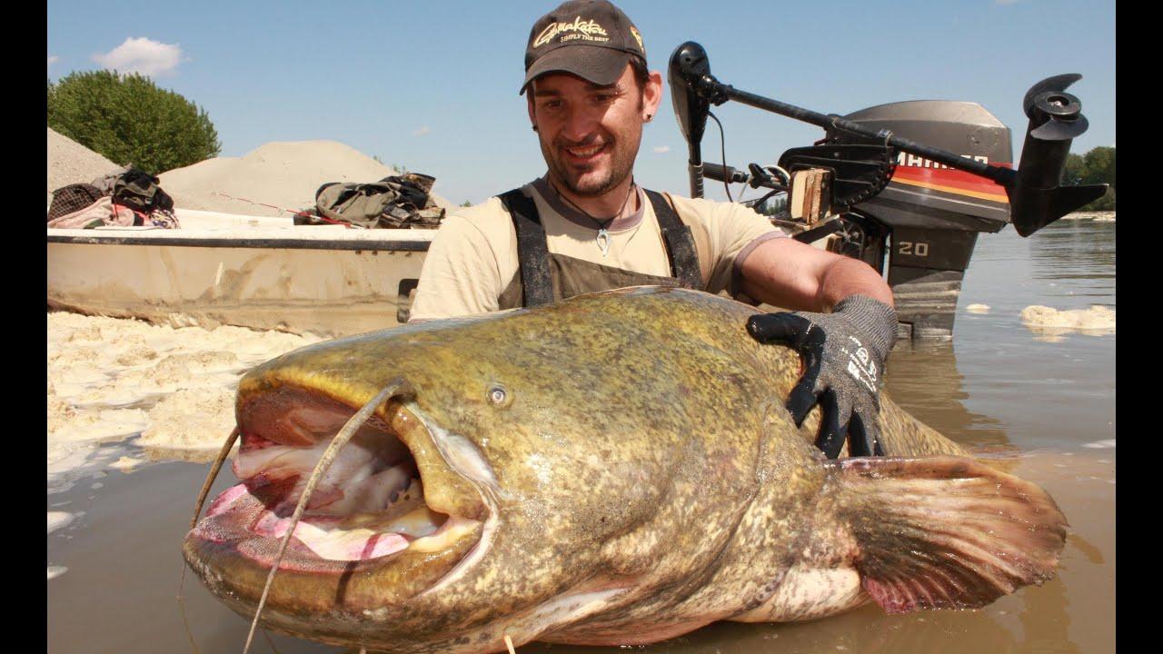 AWESOME CATFISH IN SPINNING FISHING by CATFISHING WORLD ... - photo#14