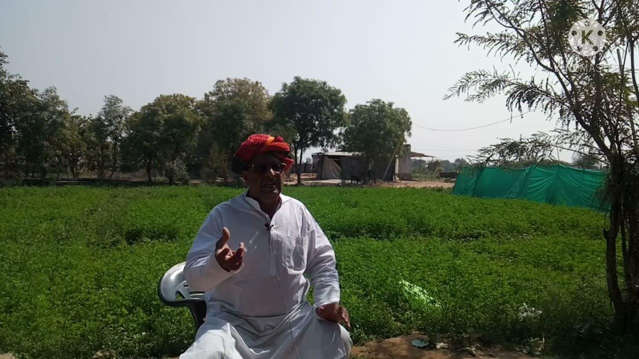 भारतीय किसान संघ के प्रांत महामंत्री ने बताया जैविक खेती क्यों जरूरी है। गोपाल जैविक वाटिका फार्म