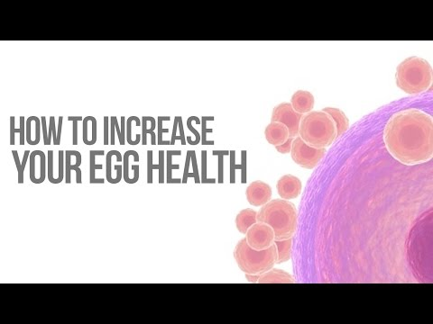 how-to-increase-your-egg-health