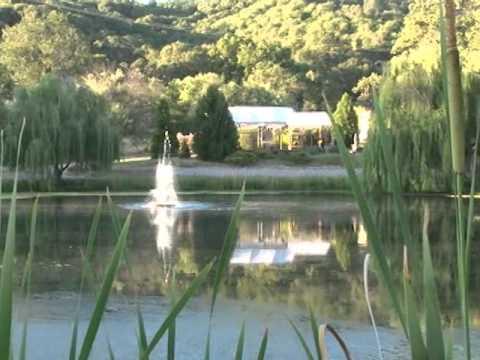 Sivananda Yoga Farm  - Swami Sitaramananda - YogiViews Trailer