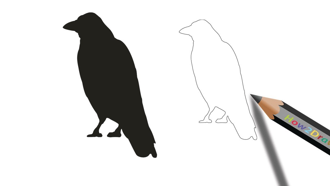 how to draw a crow step by step easy drawing coloring youtube how to draw a crow step by step easy drawing coloring
