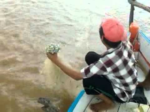 Fishing in river narmada at zanor by RAJ