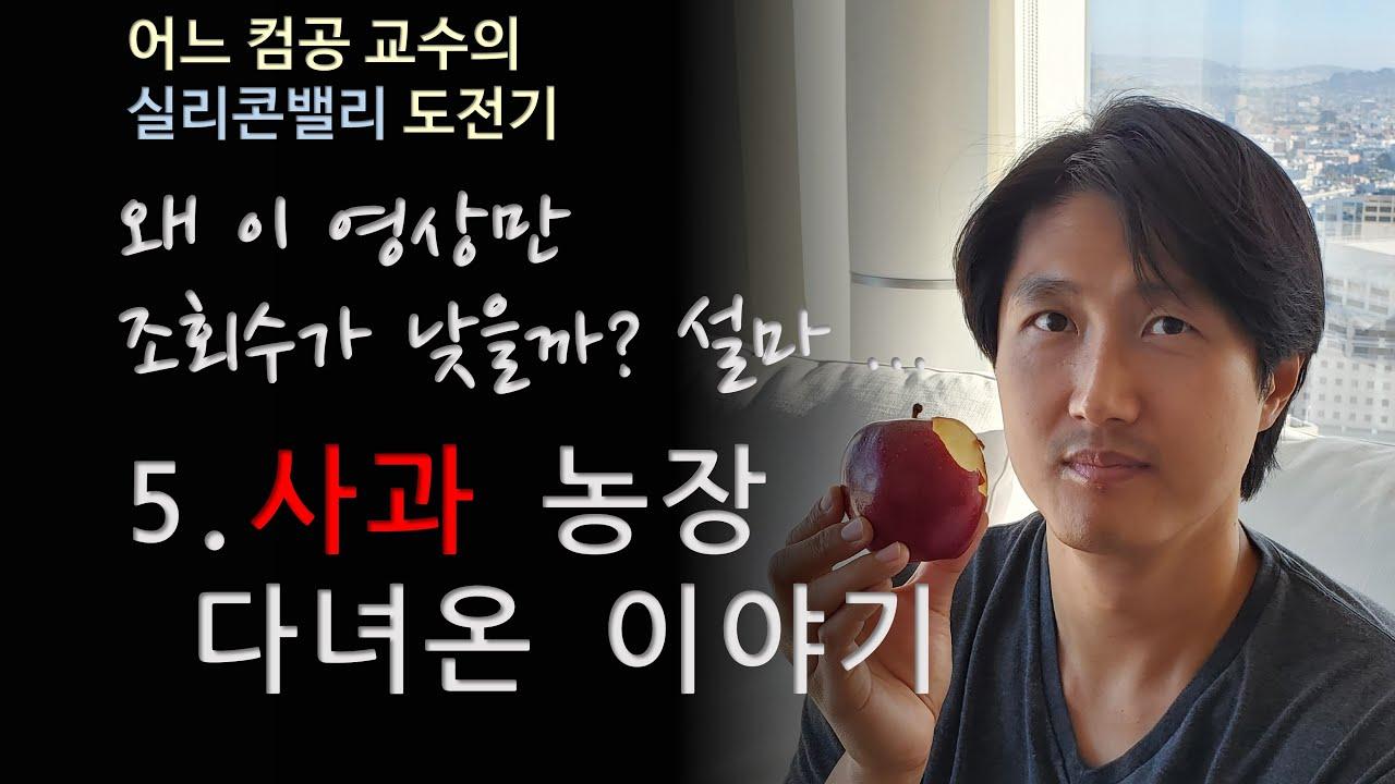 Ep.5 사과 농장 방문기 - 어느 컴공 교수의 실리콘밸리 도전기 | 설마 내가 사과 따러 | 사과는 알고 애플은 모르냐! OTL
