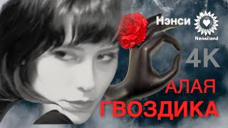 NENSI  - Алая Гвоздика  (AVI Compilation Music)