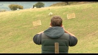 Sheepdog Trial  A Way with Dogs Episode 1
