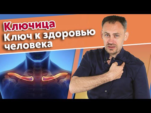 Тест шин автомобилей