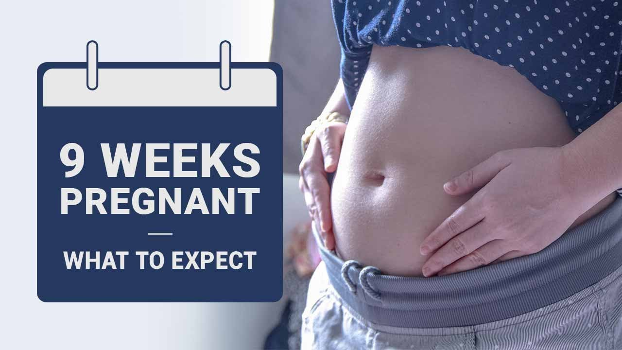 9 Weeks Pregnant What To Expect Youtube