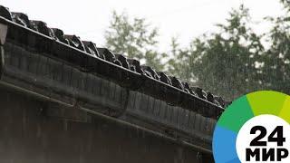 Дождливое лето: Москву снова ожидают грозы