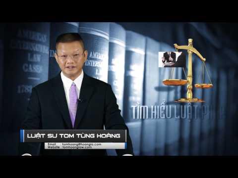 Tiền Cấp Dưỡng Nuôi Con - Tìm Hiểu Luật Pháp Với Luật Sư Tom Tùng Hoàng 07