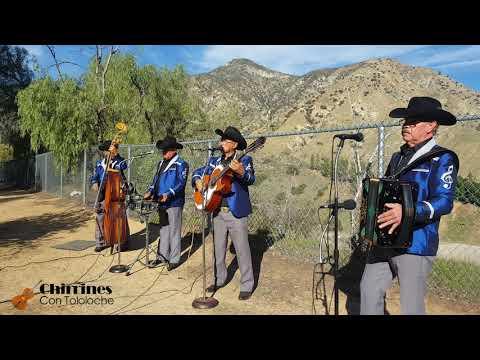 Dos Ojas Sin Rumbo - Chirrines Con Tololoche En California 818-290-4645