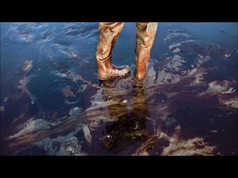 THE GULF OF MEXICO OIL SPILL