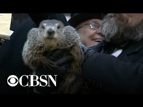 Groundhog Day 2019: Punxsutawney Phil makes his weather prediction