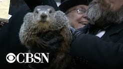 Groundhog Day 2019: Punxsutawney Phil makes his weather prediction