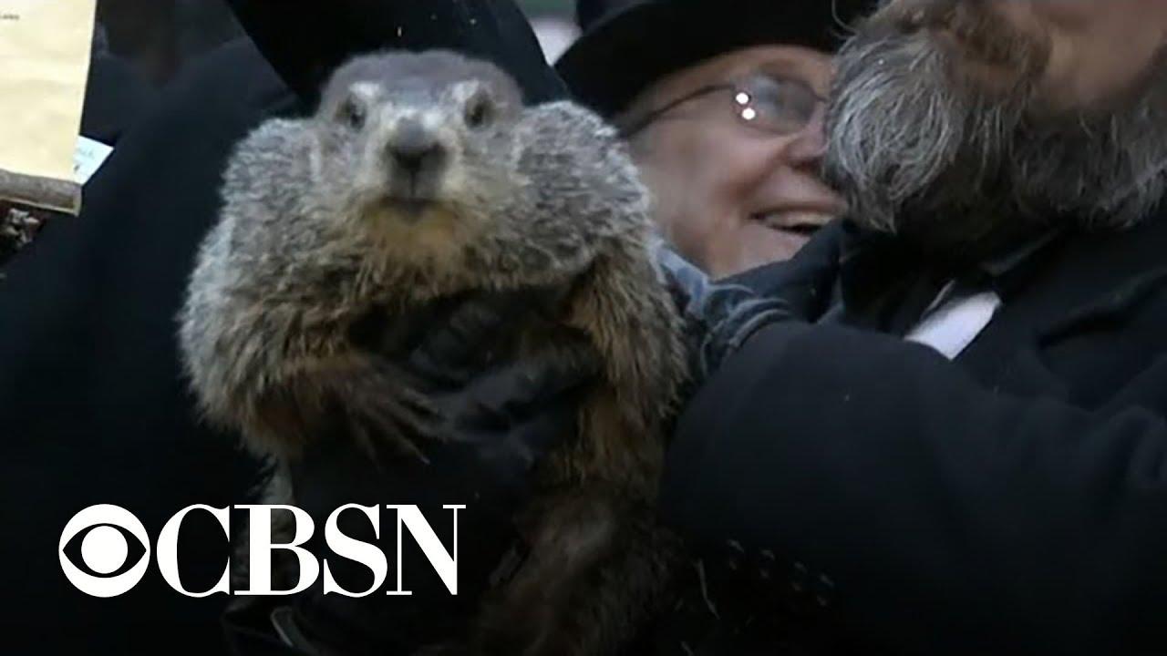Groundhog Day 2020: Live updates from Punxsutawney