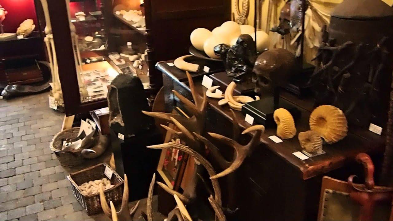 Winkel 39 het rariteiten kabinet 39 in den haag youtube for Reiswinkel den haag