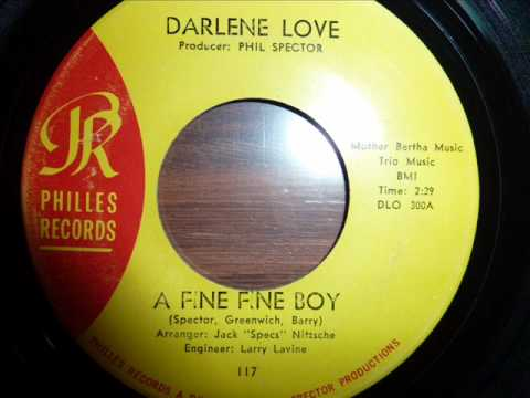 Darlene Love - A Fine Fine Boy mp3