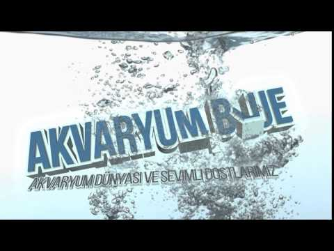 Akvaryum Blue / Intro