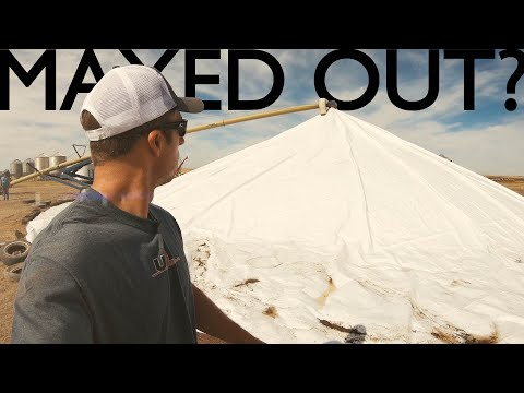 Maxed Out? - Harvest Episode 13