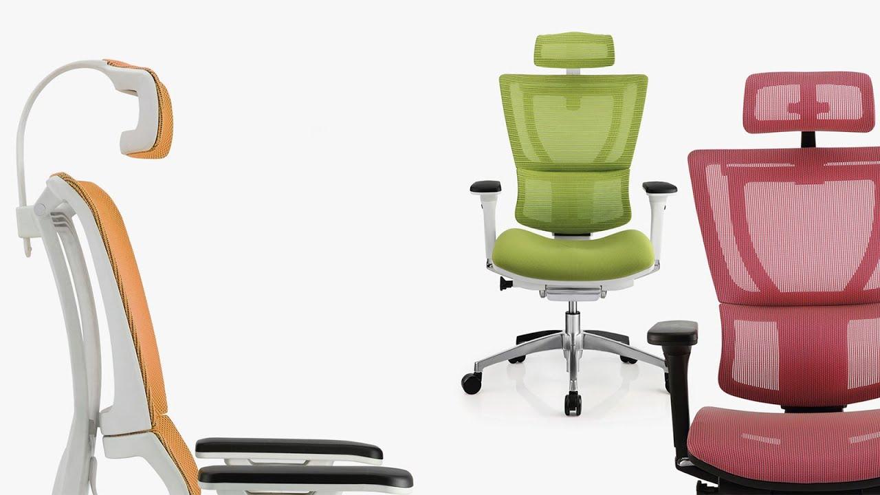 Mirus Ergonomic Office Chair With Headrest