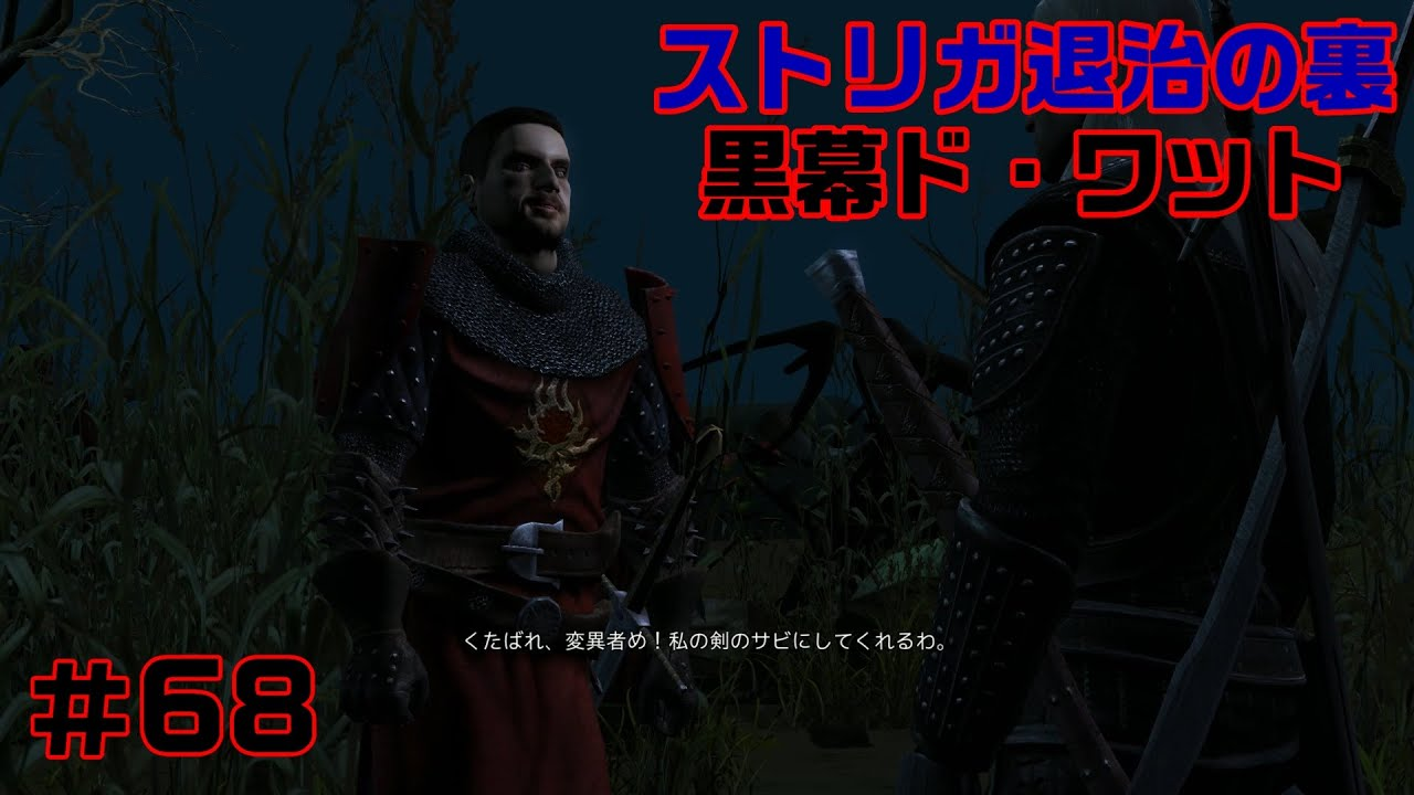 Hd Rpg ストリガ退治の黒幕ド ワット伯爵 The Witcher Enhanced Edition ウィッチャー ゲーム実況 68 Youtube