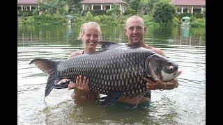 103 Ib Siamese Carp - Gillhams Fishing Resorts 2013