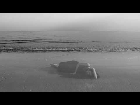 Lorelle Meets The Obsolete — Líneas En Hojas [OFFICIAL VIDEO] Mp3