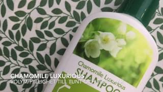 Aubrey Organics schampo grön serie för normalt hår