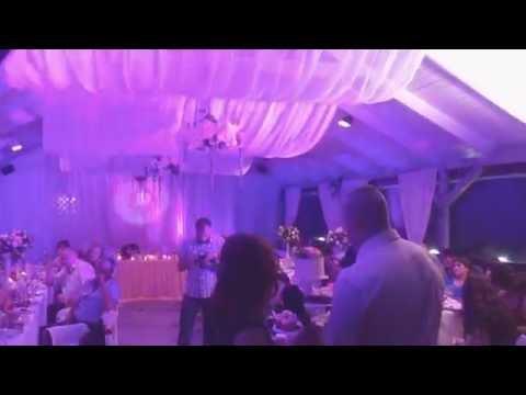 Оформление свадеб. Украшение свадебного зала. 03