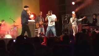 Postmen Live @ Reggae Roepaen 2013 - Cocktail