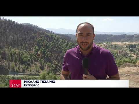 Newpost.gr - Τι δήλωσε ο βασικός ύποπτος για την πυρκαγιά στην Εύβοια