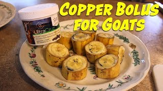 Copper Bolus for Goats