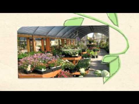 Penngrove Growers Nursery Retail Near Petaluma Ca 94954