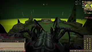 Runescape 3 | Level 3 Araxxi Kill with 2 Deathtouched Darts #1