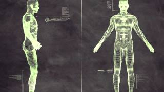 Darma vs Egorythmia - Robotics