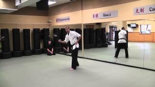 Kenpo Six - technique 6