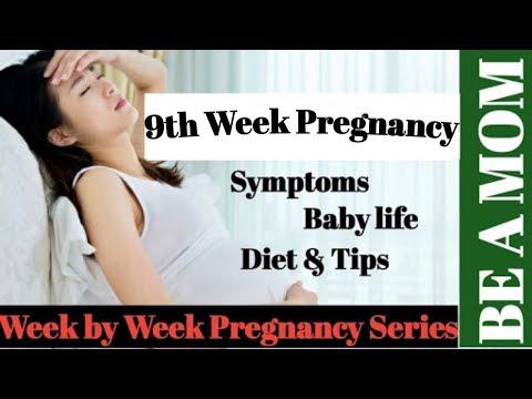 9th-week-of-pregnancy,-pregnancy,-week-by-week-pregnancy,-गर्भावस्था-का-नौंवा-हफ्ता-,