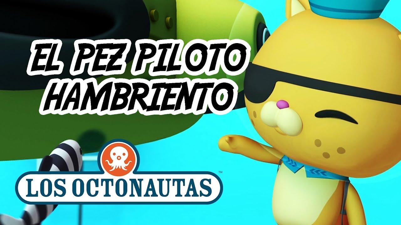 Los Octonautas Oficial en Español - Los Octonautas y El Pez Piloto Hambriento   Episodio 21