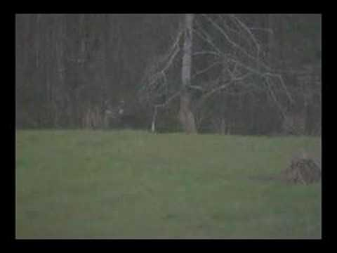 Joe Parsons Hope Outdoors Hunt