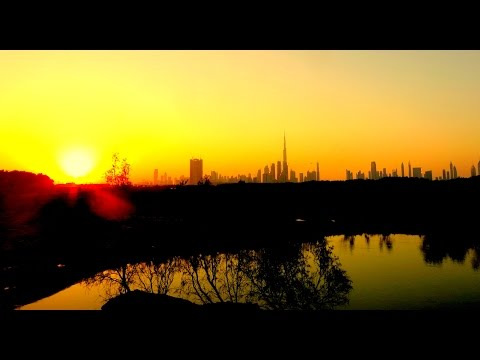 Ras Al Khor Wildlife Sanctuary & Sun Set View – Dubai ❤
