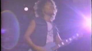 Billy Squier - Love Is The Hero