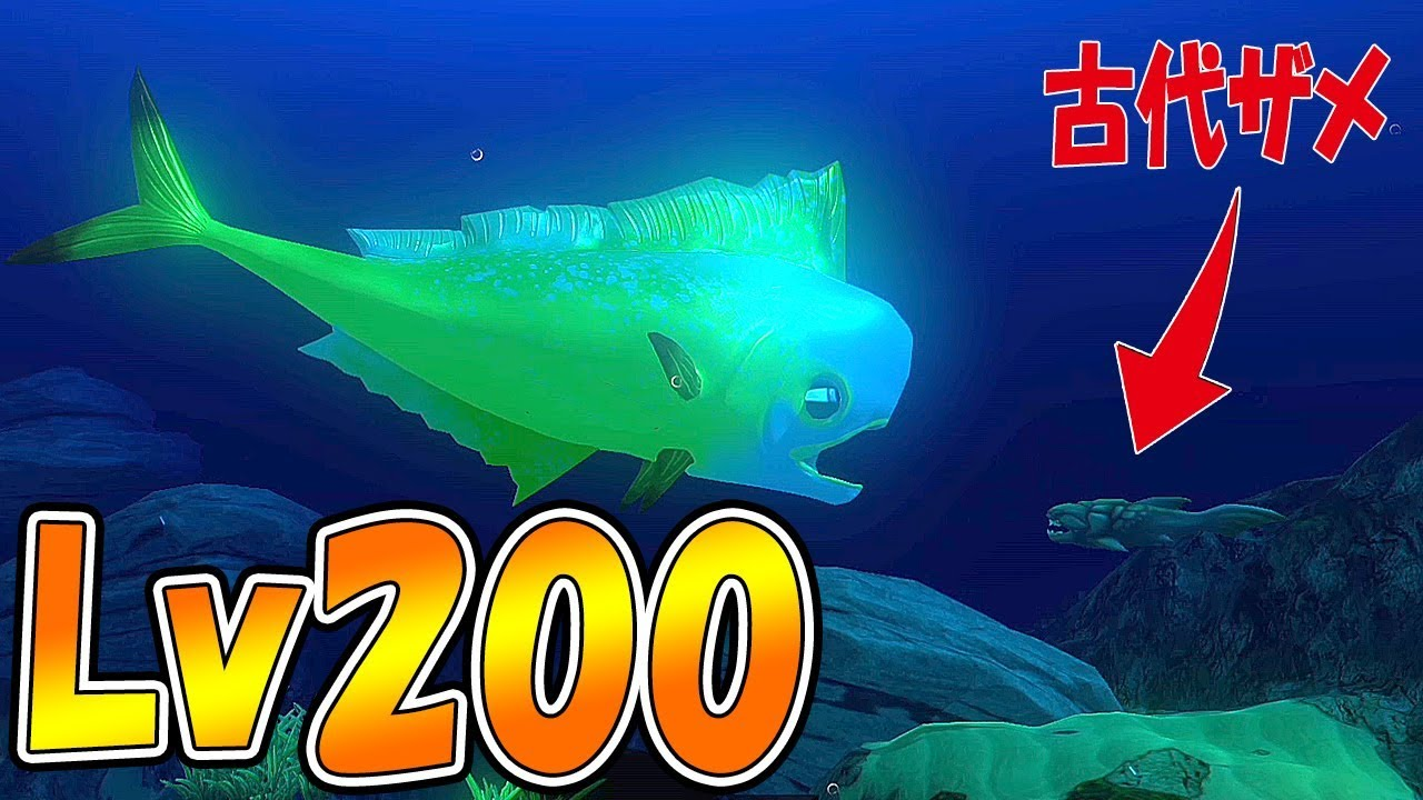 Lv200 for Feed and grow fish online