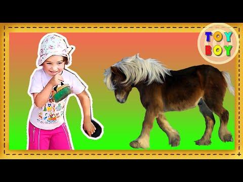 Катание на лошадях, игры с лошадьми.  Лошадки пони.  Дети катаются на лошадях  #Toyboy