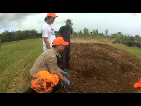 farmLife: cho youngsang visits ginger john